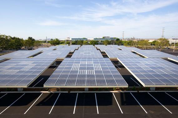 solar trees